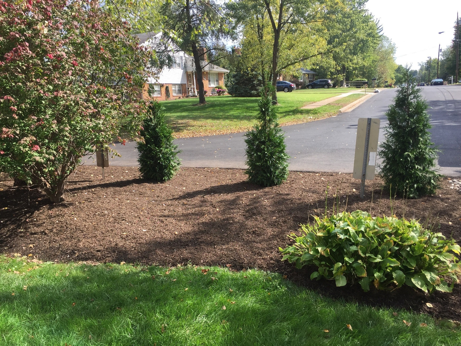 Landscaping Photo 31